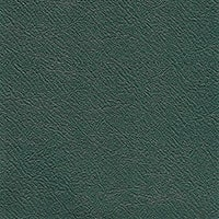 British Racing Green (special order)